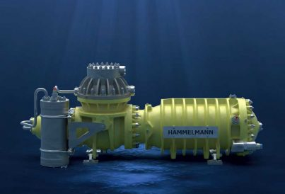 Subsea process pump